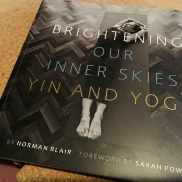 beste yogaboeken over Yin Yoga